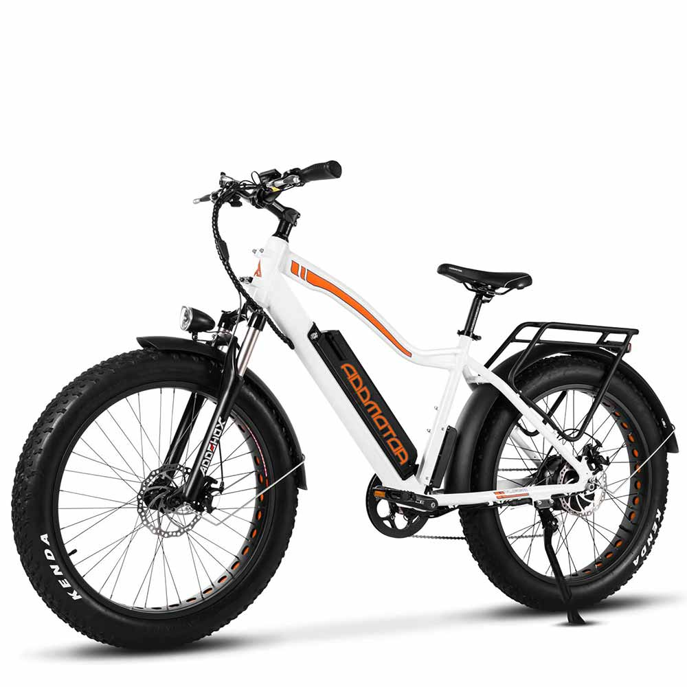 Electric Fat Bike for Adults